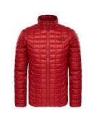 Abrigos y chaquetas de pluma y/o fibra